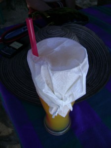 My orangeade, with bee protector.