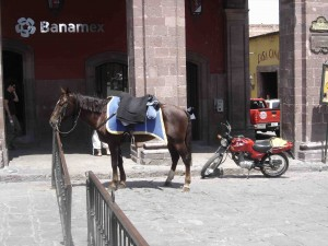 Transportation choices in San Miguel. Being in a hurry isn't high on anyone's list, whew!